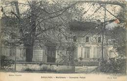 CPA 33 Gironde Dieulivol Martineau Domaine Pellet - Otros Municipios