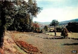 19 - Corrèze - Le Limousin - Les Ombres S'allongent Les Bêtes S'attardent - Voir Scans Recto-Verso - France