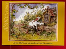 CP 68 Alsace Turckheim En été Il Fait Bon ... Vignoble Alsacien Illustrateur Eric Braesch Flamme Munster CAD 28-06-2006 - Turckheim
