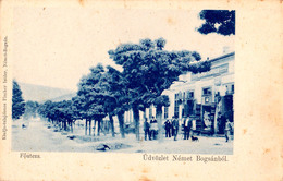 NÉMET BOGSÁN / BOCSA MONTANA - CARAS SEVERIN : FÖUTCZA / COMMERCE : ISIDOR FISCHER -> JUDAÏCA ! ~ 1900 - RRR !!! (ac606) - Roumanie