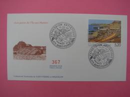 Enveloppe 1er Jour FDC SPM/Saint Pierre Et Miquelon. N°367 LES GRAVES De L'ILE AUX MARINS Oblitération 10.02.1999 - St.Pierre Et Miquelon