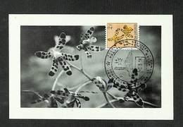RUANDA-URUNDI - Carte MAXIMUM 1958 - Palais Du CONGO BELGE Et Du RUANDA-URUNDI - Fleurs - ANSELLIA - Ruanda