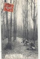 BOIS DE BOULOGNE . ALLEE DES SOUPIRS . CARTE TRES ANIMEE AFFR SUR RECTO LE 25 JUILLET 1908 - France