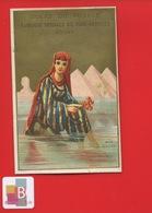 REIMS DOCKS VOYAGE Jolie Chromo Dorée MER ROUGE EGYPTE Jeune Femme Corail Pyramides - Chromos