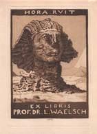 "08447 ""EX LIBRIS PROF. DR. L. WAELSCH - ....HORA RUIT...."" ORIG. - Ex Libris"