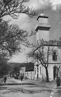 Afrique-Algérie  BATNA La Mosquée ETAT = Voir Description  *PRIX FIXE - Batna