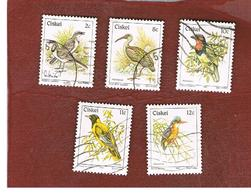 CISKEI   - SG 6.14b - 1981  BIRDS - USED ° - Ciskei