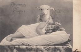 Baby & Lamb , 1904 - Enfants