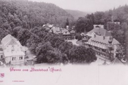 AO89 Gruss Aus Alexisbad, Harz - Early Undivided Back - Germany