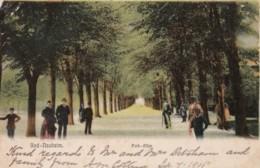 AO89 Bad Nauheim, Park Allee - Animated, Undivided Back, Posted 1905 - Bad Nauheim