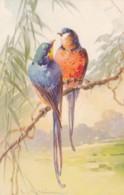 AS76 C. Klein - Birds - 2 Birds On A Branch - Klein, Catharina