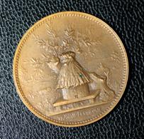 """Médaille Jeton Banque 1894 """"Caisse D'Epargne Et De Prévoyancede Paris - Fondé En 1818"""" Ruche - Abeille - Professionnels / De Société"""