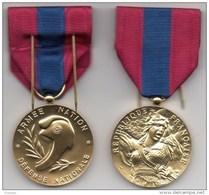 Médaille De La Défense Nationale Bronze - Neuve - France