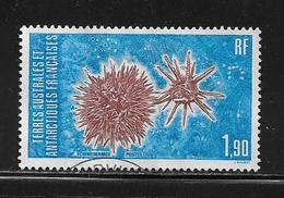T.A.A.F.  ( TA8 - 75 )   1986  N° YVERT ET TELLIER  N° 117 - Tierras Australes Y Antárticas Francesas (TAAF)