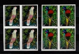 Nouvelle Calédonie Non Dentelé - YV 462 & 463 Non Dentelé N** En Blocs De 4 , Oiseaux - Sin Dentar, Pruebas De Impresión Y Variedades