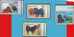 Chiens/Honden ** - Mongolie/Mongolië - Mongolie