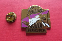 Pin's,Sport,GYMNASTIQUE,Frauenfeld 1995,Suisse - Gymnastique