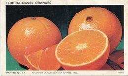 FLORIDA NAVE ORANGES, FLORIDA DEPARTAMENT OF CITRUS 1980. U.S.A. ART POSTAL NOT CIRCULATED - LILHU - Pintura & Cuadros