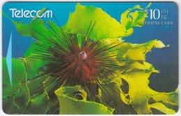 NEW ZEALAND A-375 Magnetic Telecom - Animal, Sea Life, Sea Urchin - 391CO - Used - Nuova Zelanda