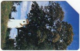 POLAND B-676 Magnetic Telekom - Plant, Tree - Used - Pologne