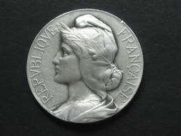 Médaille En Bronze -Union D'enseignement Professionnel  **** EN ACHAT IMMEDIAT **** - Professionnels / De Société