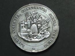 Médaille En Argent (?) - Société D'agriculture Et D'horticulture De La Côte Saint André    **** EN ACHAT IMMEDIAT **** - Professionnels / De Société