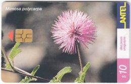 URUGUAY A-371 Chip Antel - Plant, Flower - Used - Uruguay