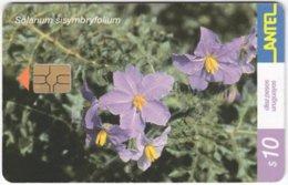 URUGUAY A-374 Chip Antel - Plant, Flower - Used - Uruguay