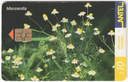 URUGUAY A-375 Chip Antel - Plant, Flower - Used - Uruguay
