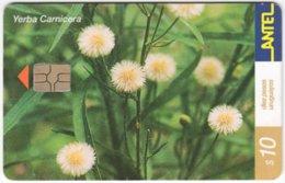 URUGUAY A-376 Chip Antel - Plant, Flower - Used - Uruguay