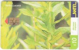 URUGUAY A-378 Chip Antel - Plant, Flower - Used - Uruguay