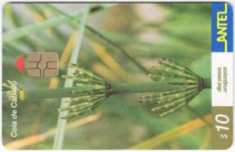 URUGUAY A-380 Chip Antel - Plant, Flower - Used - Uruguay