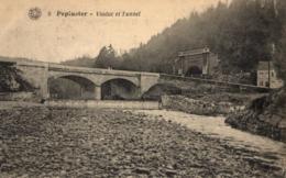 BELGIQUE - LIEGE - PEPINSTER - Viaduc Et Tunnel. - Pepinster