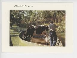 Marais Poitevin Images De France (transport Bétail Vache) Cp Vierge Photographe Guinouard - France