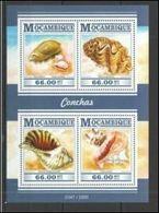 Mozambique 2015  Shells Coquillages MNH - Coneshells