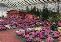 De Gentse Floraliën Van 1965 / Les Floralies Gantoises De 1965. - Expositions