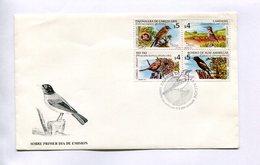 PAJAROS OISEAUX BIRDS - TIO TIO, CAMINERA, BOYERO, PAJONALERA. URUGUAY 2000 ENVELOPE FDC - LILHU - Ohne Zuordnung