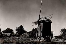 Old Windmill (Tallinn, Estonia). 1962. - Moulins à Vent