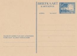 Nederlands Indië - 1946 - 3,5 Cent Strand Met Palmenbomen, Briefkaart G75 - Ongebruikt - Nederlands-Indië
