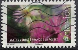 France 2019 Oblitéré Used Éclosion L'Osteospermum Marguerite Africaine - Frankreich