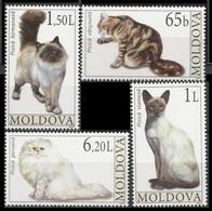 2007Moldova586-589Cats7,00 € - Hauskatzen