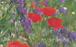 Télécarte Japon / 110-016 - FLEUR - COQUELICOT - POPPY Flower Japan Phonecard - Mohn TK - Fleurs