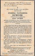 Liedekerke, 1940, Joanna Detroyer, Vayens - Devotieprenten