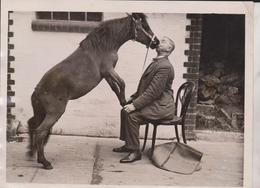 EFFECTIONATE PONY CIRCUS ZIRKIS CIRCO CIRQUE  ANIMAUX ANIMALS ANIMALES 20*15CM Fonds Victor FORBIN 1864-1947 - Fotos