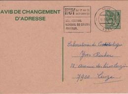 CINÉMA Flamme HUY Belgique Festival Mondial Cinéma Amateur Entier Postal Avis Changement Adresse Pas Courant. - Stamps