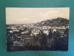 Cartolina Conegliano - Panorama - 1955 - Treviso