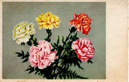 Blumenstrauß Nelken Ca 1920 - Feiern & Feste