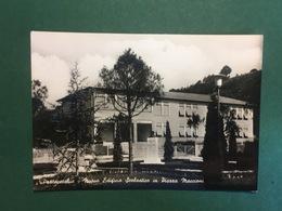 Cartolina Pratovecchio - Nuovo Edificio Scolastico - 1973 - Arezzo