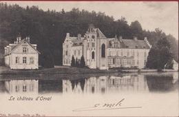 Le Chateau D' Orval Villers-devant-Orval Florenville 1902 (En Très Bon Etat) (In Zeer Goede Staat) - Florenville