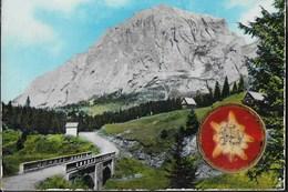 VENETO - SAPPADA (BL) - MONTE PERALBA- STELLA ALPINA - VIAGGIATA DA SAPPADA 1966 - ANNULLO MECCANICO - Italia